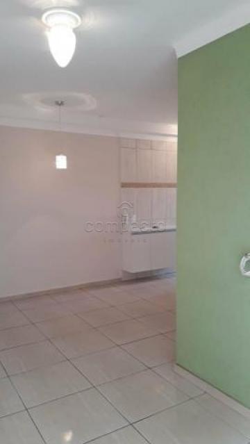 Alugar Apartamento / Padrão em São José do Rio Preto. apenas R$ 175.000,00
