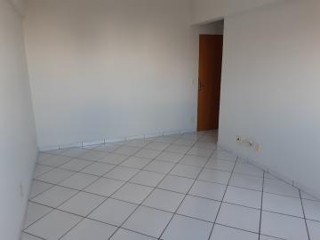 Apartamento / Padrão em São José do Rio Preto Alugar por R$700,00