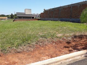 Terreno / Condomínio em São José do Rio Preto , Comprar por R$116.000,00