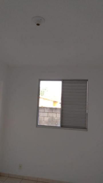 Apartamento / Padrão em São José do Rio Preto Alugar por R$620,00