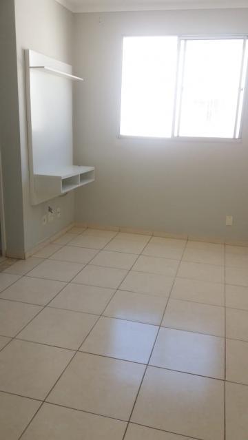 Apartamento / Padrão em São José do Rio Preto Alugar por R$720,00