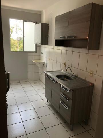 Alugar Apartamento / Padrão em São José do Rio Preto R$ 750,00 - Foto 4