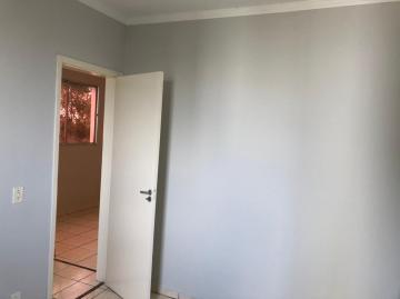 Alugar Apartamento / Padrão em São José do Rio Preto R$ 750,00 - Foto 11