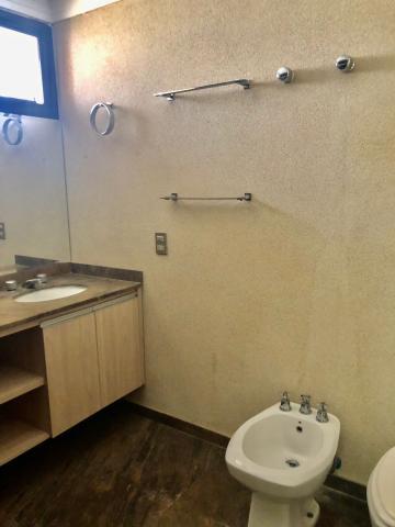 Alugar Apartamento / Padrão em São José do Rio Preto R$ 2.500,00 - Foto 12