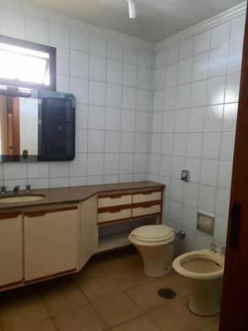 Alugar Apartamento / Padrão em São José do Rio Preto R$ 2.000,00 - Foto 13